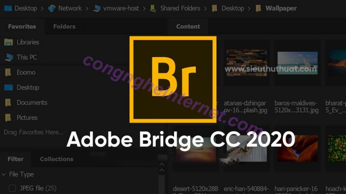 Download Adobe Bridge CC 2020