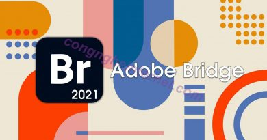 Download Adobe Bridge CC 2021